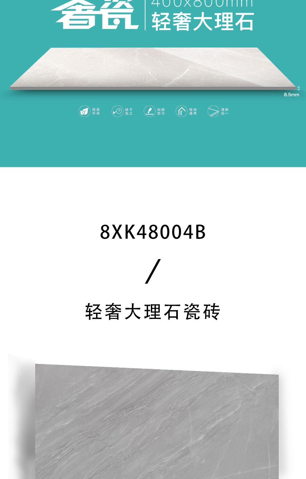 8XK48004B_02.jpg