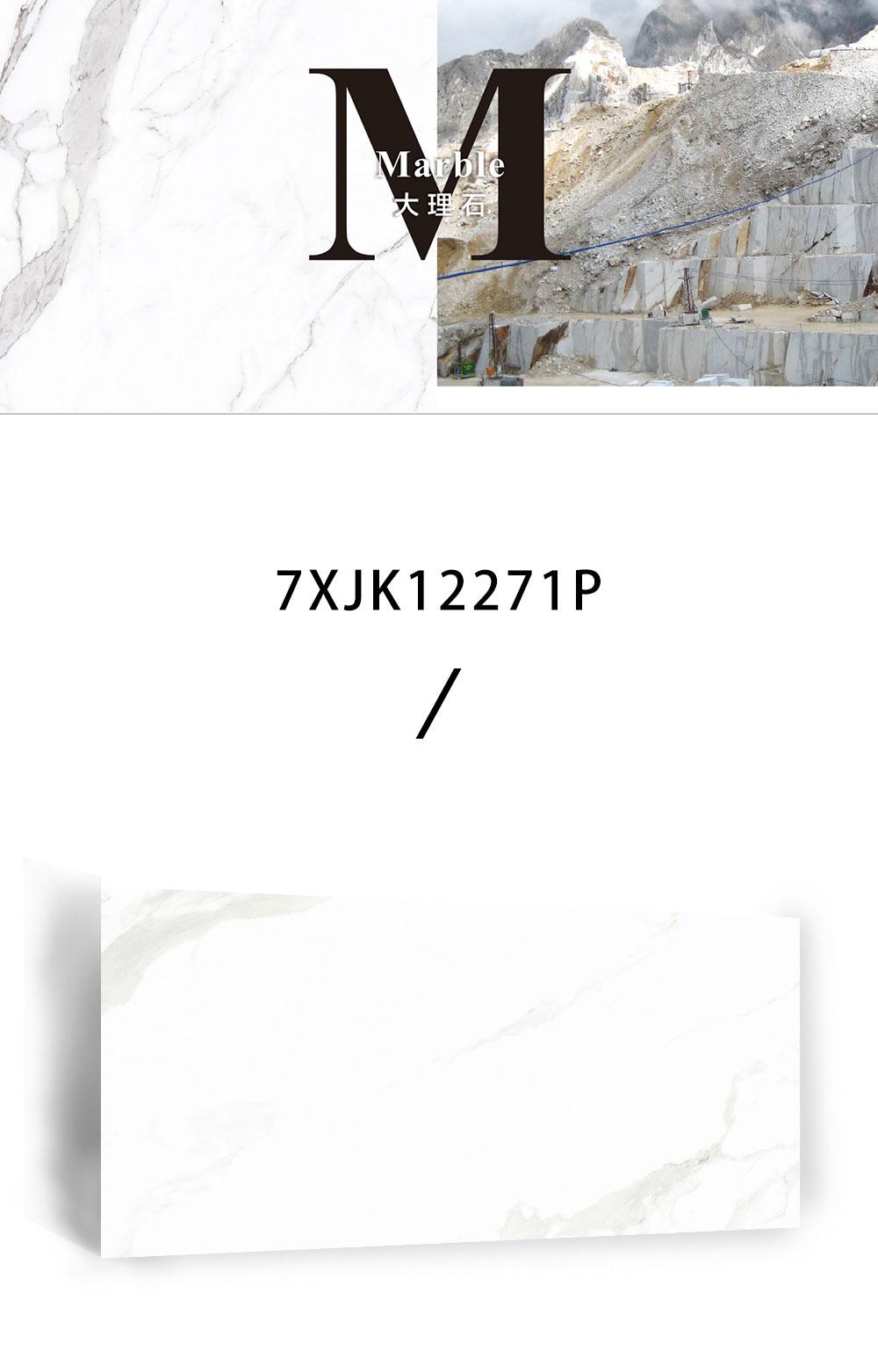 7XJK12271P_02.jpg